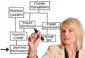 change management coach